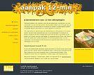 website Aanpak 12-min 2010
