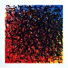 Transitions CMY - Linosnede 30 x 30 cm - 2011